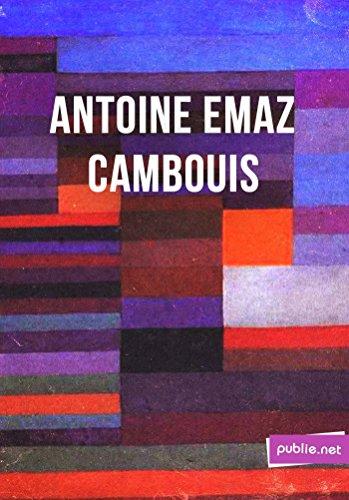 """Cambouis: """"c'est mon travail, strictement, c'est-à-dire ce qui a pu passer de vivre en mots"""" (Temps Réel)"""