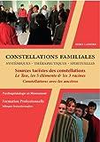 DVD Coffret Constellations Familiales et Systémiques - Vol 1 : les Sources Taoïstes des Constellations, le Tao, les 5 Eléments et les 3 Racines