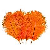 Lucky Will 6 - 7 pulgadas Natural plumas de avestruz, bodas y fiestas decoración decoración del hogar decoración