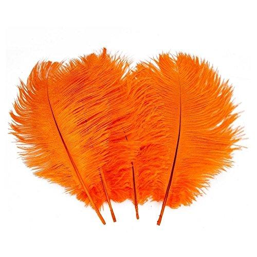 Lucky Will 6-7 Zoll Naturfedern Straußenfedern Strauß Feder für Hochzeit Dekoration DIY Orange 50 (Kostüm Strauß Kind)
