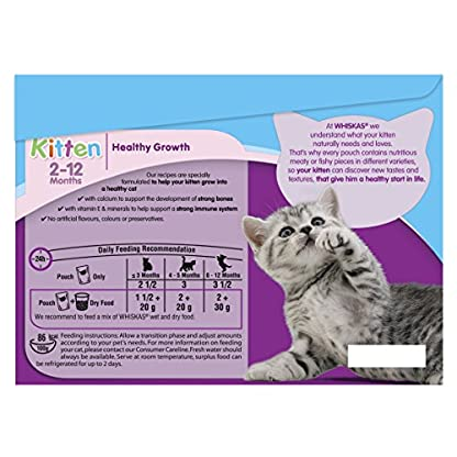 Whiskas Kitten Cat Food Fish Selection in Jelly, 12 x 100g 5