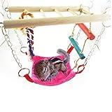 Bwogue Hamster Spielzeug