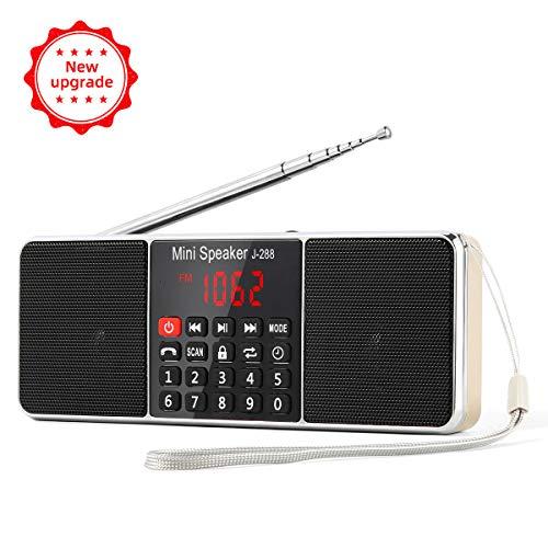 PRUNUS J-288 Tragbar AM(MW) UKW FM Bluetooth USB SD TF Radio MP3 mit Doppelmagnet Lautsprechern Stereo Sound AUX und Sleep Timer Funktion