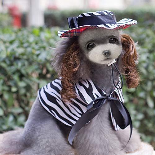 Welpen Kostüm Hund Katze Kostüm Halloween Cosplay Party, Hund Katze Perücke Hut Mantel Zubehör Haustier Outfit - Zebra Hunde Kostüm