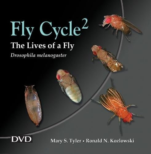 Fly Cycle2: Lives of a Fly: Lives of a Fly DVD