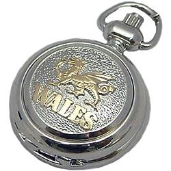 A E Williams 5824WTT ladies pendant/handbag watch