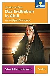 Schroedel Interpretationen: Das Erdbeben in Chili