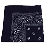 xel_uu.11 Fashion Herren Damen Paisley Hip Hop Square Schal