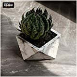 Paradox Origami Cement Planter/Vase / Flower Pot/Home Decor