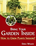 Bring Your Garden Inside: How to Grow Plants Indoors?