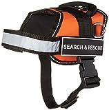 Dean & Tyler Works Suche und Rettung Pet Hundegeschirr, klein, passt Umfang Größe: 25bis 86,4cm, orange/schwarz