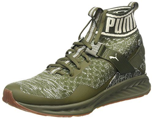 Puma Ignite Evoknit Hypernature, Chaussures Multisport Outdoor Homme