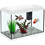 All Pond Solutions Aquatlantis Funny Fish 35 Aquarium Fish Tank 15