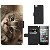 Best Cutest I Phone 5 Cases - Super Galaxy Cell Phone Card Slot PU Leather Review