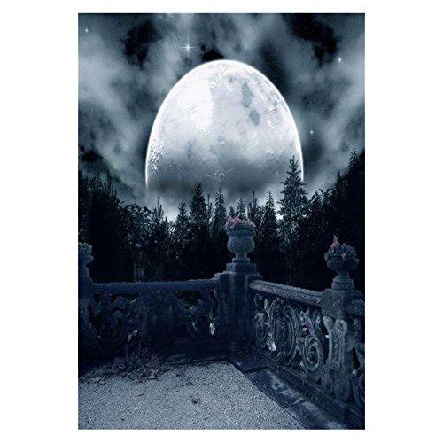 l Fotografie Hintergruende Dunkel Horror Nacht Vollmond Baeume Duester Balkon Blick Halloween Thema Foto Kulisse (Halloween-party-foto-kulisse)