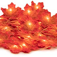 HENMI Maple Leaves Lights, Fall Garland with Lights, Maple Garland Harvest Autumn Leave Light for Halloween, Thanksgiving &Christmas (Warm White)