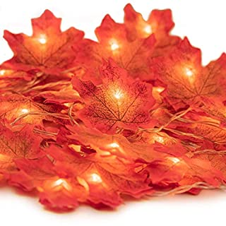 HENMI Maple Leaves Lights,Fall Garland with Lights, Maple Garland Harvest Autumn Leave Light for Halloween,Thanksgiving &Christmas (Warm white)