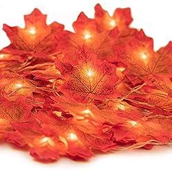 Herbstgirlande,HENMI Herbst Blättergirlande, Ahornblatt Lichterketten, Herbst Saison 20-Lichtern, perfekte Dekoration für Erntedankfest Deko& Weihnachtsbeleuchtung