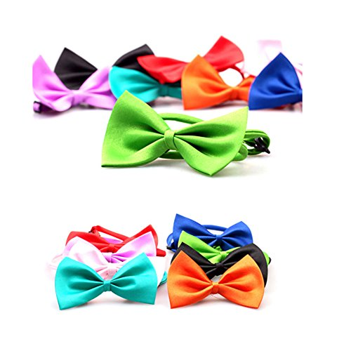 Gogogo 1 × Niedlich Mini-Querbinder Haustier Krawatte Welpen Hündchen Katze Halsband Haustier Angebote (zufällige Farbe)