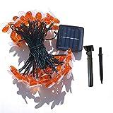 Produit satisfaisant 30 guirlandes solaires d'abeille LED chaudes blanc chaud...