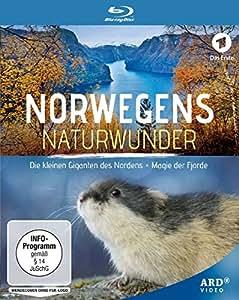 Norwegens Naturwunder: Die kleinen Giganten des Nordens / Magie der Fjorde [Blu-ray]