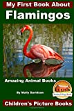 My First Book About Flamingos - Amazing Animal Books - Children's Picture Books