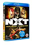 WWE: NXT - From Secret to Sensation [DVD] [Blu-ray]