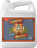 4 Liter : Advanced Nutrients Sensi Cal-Mag Xtra Plant Nutrient, 4L