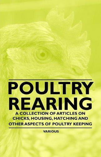 Poultry Rearing - A Collection of Articles on Chicks, Housing, Hatching and Other Aspects of Poultry Keeping