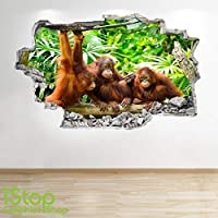 1Stop Graphics Shop ORANGUTAN WALL STICKER 3D LOOK - BEDROOM LOUNGE NATURE ANIMAL WALL DECAL Z175 Size: Large