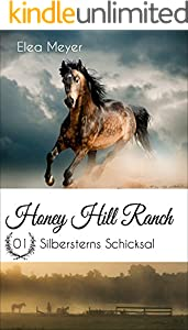 Honey Hill Ranch 01: Silbersterns Schicksal