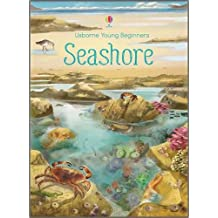 Young beginners : Seashore