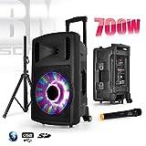 BM SONIC 700W FUZZY12LED - BT Enceinte sono mobile 12' à LEDs RVB + Micro...