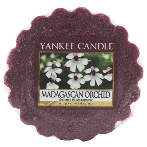 YANKEE CANDLE 1344802E Tartelette Parfumée en Cire Orchidée de Madagascar Combinaison Rouge 6 x 5,7 x 2 cm 22 g