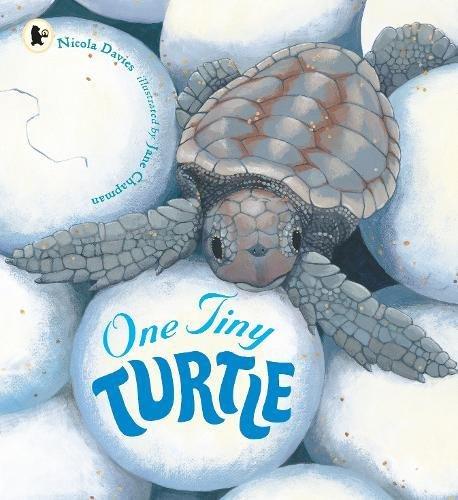 one-tiny-turtle-nature-storybooks