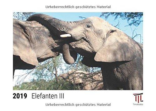 Elefanten III 2019 - Timokrates Tischkalender, Bilderkalender, Fotokalender - DIN A5 (21...
