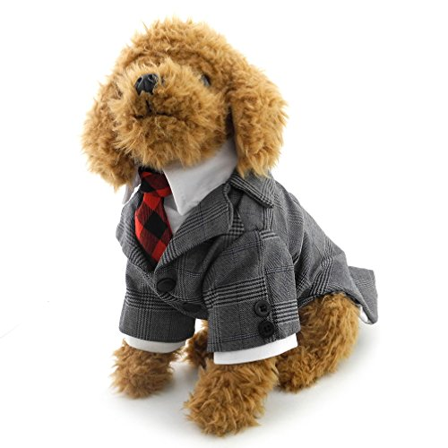 ranphy Kleiner Hund/Katze Plaid T-Shirt Smoking Red Krawatte T-Shirt Party Anzug Haustier Kleidung