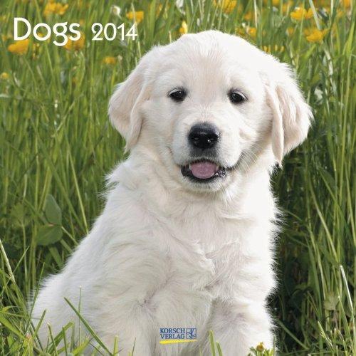 Dogs 2014. Broschürenkalender