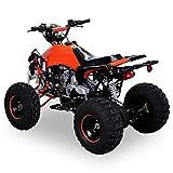 Kinder Quad 125 ccm orange/weiß Panthera - 3