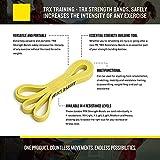 TRXTraining – TRXKraftbänder, Erhöhen sicher die Intensität jeder Übung, Medium