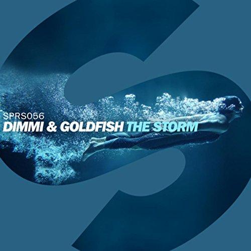 the-storm-original-mix