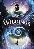Best Violins Viking - Wildings Review