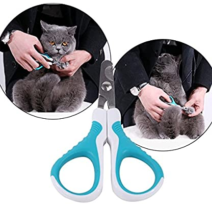 MAIYADUO Pet Cat Nail Clippers Trimmer, Cat Puppy Rabbit Bird Kitten Hamster Stainless Steel Blades Nail Clippers… 6