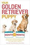 Your Golden Retriever Puppy Month by Month: Everything You Need to Know at