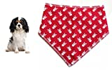 Spoilt Rotten Pets Red Mini Skull Dog Bandana Small 11