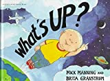 What's Up? (Wonderwise) by Mick Manning (1997-09-03)