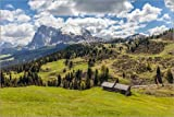 Posterlounge Forex 30 x 20 cm: Summer on the Alpe di Siusi (South Tyrol, Italy) di Christian Müringer