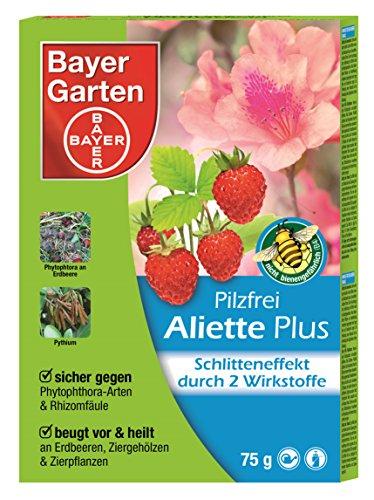 Braune Flyer (Bayer Garten 84398837 Pilzfrei Aliette© Plus 75 g)