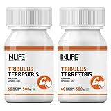 Best Tribulus Terrestris - Inlife Tribulus Supplement, Saponins > 40%, 1000 Mg Review