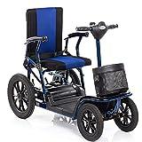 APOAD Elektrischer Rollstuhl, Elektromobil, E-mobil, Mini Scooter Faltbar Seniorenfahrzeug,vierrädriges Elektrofahrzeug,elektroroller,zu Öffnender Handlauf,elektromagnetische Bremse,drehbarer Sitz